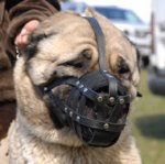 Leather Basket Dog Muzzle for Anatolian Shepherd