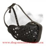 Leather Dog Muzzle For Agitation Training