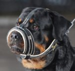 Leather Royal Nappa Dog Muzzle for Rottweiler