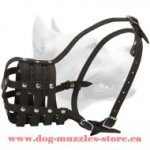 Medium Leather Dog Muzzle For Free Breathing