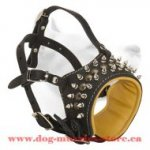 Gorgeous Medium Leather Dog Muzzle For Stylish Dogs
