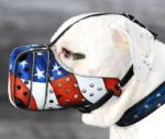 Handpainted Leather Dog Muzzle