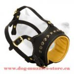 Leather Dog Muzzle For Obedience Training