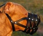 Leather Basket Dog Muzzle for PitBull