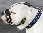 Royal Nappa Leather PADDED Dog Muzzle fit American Bulldog -