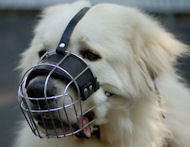 Pyrenees Wire Basket Dog Muzzle-Pyrenean Mountain Cage Muzzle