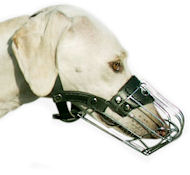 Persian Greyhound Wire Muzzle-Cage Basket Dog Muzzle for Saluki