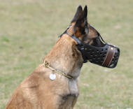 Agitation/Police Dog Muzzle For Malinois-Leather Muzzle