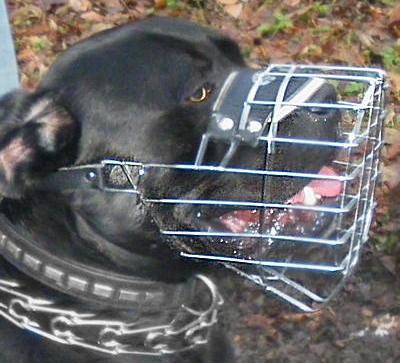 Wire Dog Muzzle for Mastiff -Mastiff Basket Cage Dog Muzzle - M9