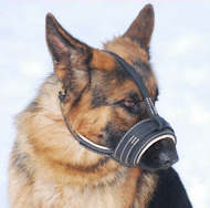 Nappa Padded Leather Dog Muzzle