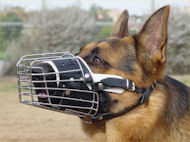 Full Padded Cage Wire Dog Muzzle for German Shepherd