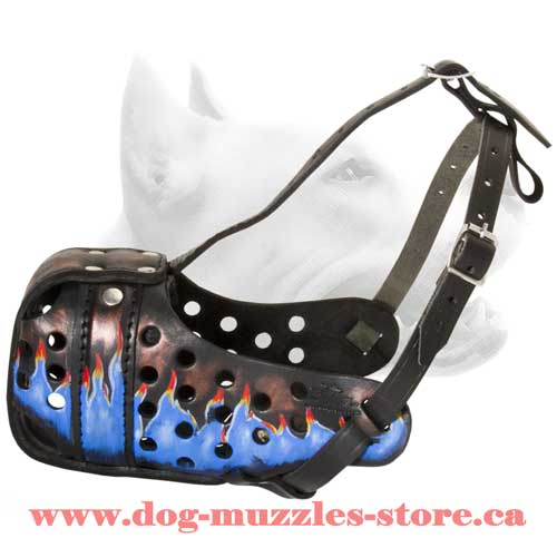 Leather Dog Muzzle For Dog Show Winners