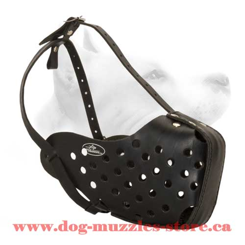 Leather Dog Muzzle For Working Dogs
