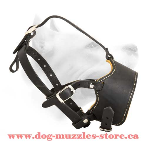 Lovely Leather Dog Muzzle