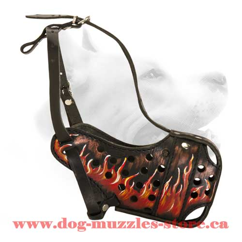 Fascinating Leather Dog Muzzle
