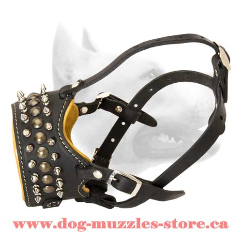 Leather Dog Muzzle For Your Dog's Safety