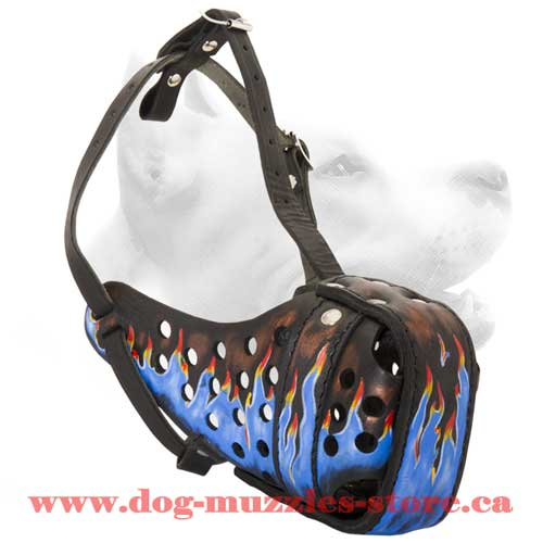 Stylish Leather Dog Muzzle For Agitation Training