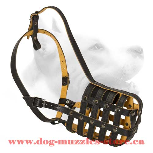 Supercool Nappa Padded Leather Dog Muzzle