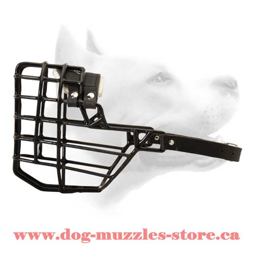 Wire Basket Dog Muzzle For Off Leash Training
