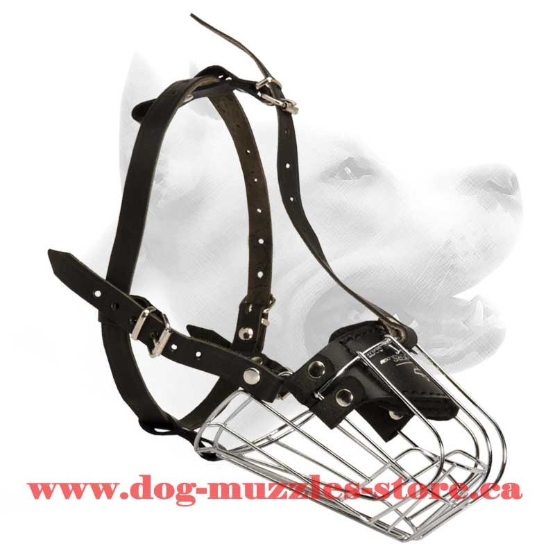 Akita/Siberian Husky Wire Muzzle-Cage Basket Dog Muzzle