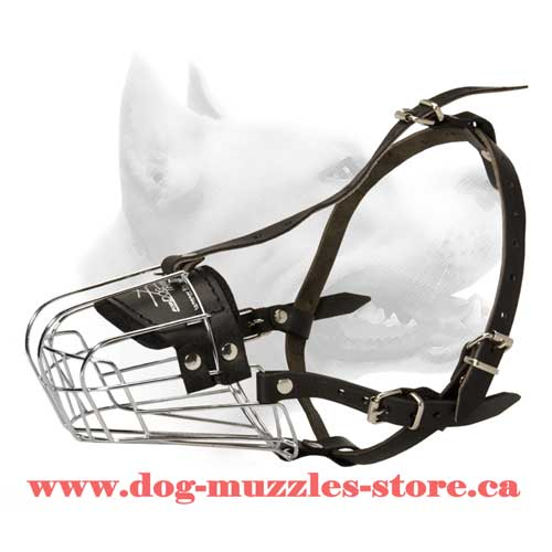 Ergonomic Design Wire Cage Dog Muzzle